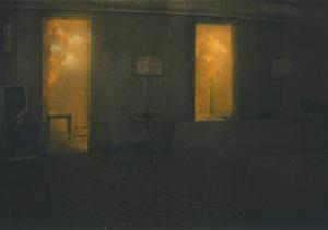 Jarik Jongman, Phenomena (detail), 2009