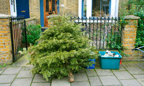 Christmas tree for recycling