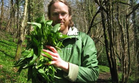 Green fingers: forager Jason Irving