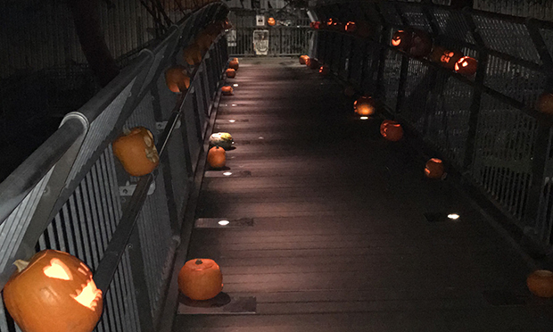 Pumpkin Bridge at night