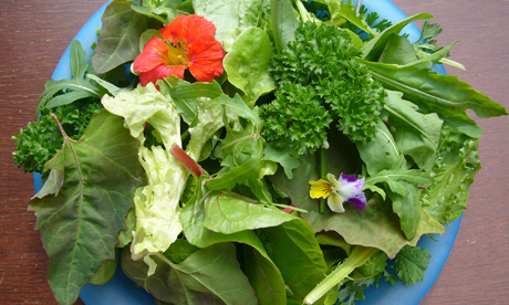 Salad wins award Growing Communities