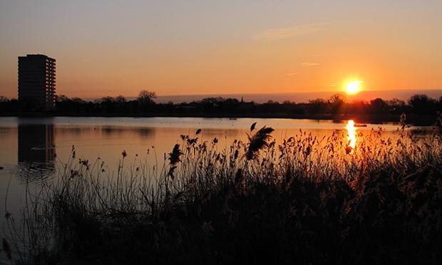 Woodberry Wetlands sunset