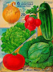 Tomato advertisment