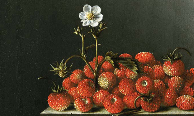 Detail from Adriaen Coorte's Strawberries Mauritshuis (1696). Image courtesy Wikimedia Commons.