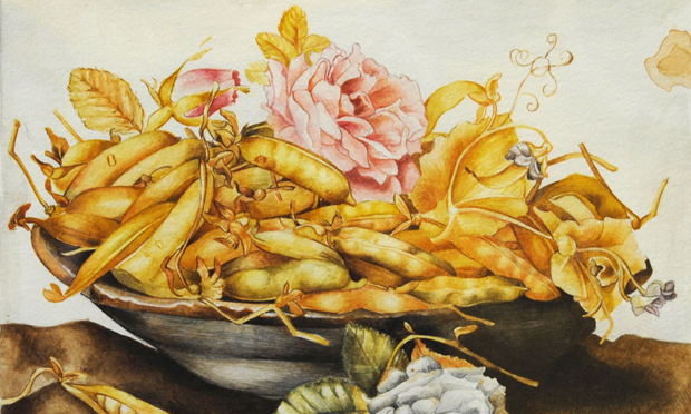 'Mature': detail from Giovanna Garzoni's Plate of Peas (1651-62). All images: Wikimedia Commons
