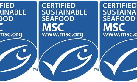 marine stewardship council