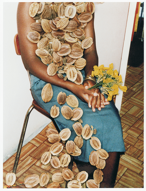 stephen-gill Untitled, from Hackney Flowers (2007)